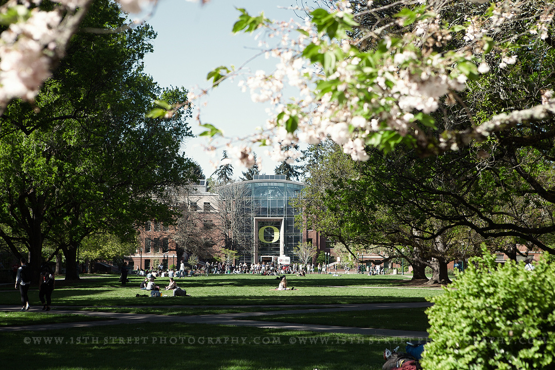 personal pics of university of oregon by photographer Monica Kane Stewart www.15thStreetPhotography.com